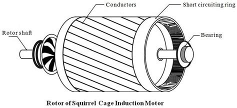 squirrel cage induction motor  engineering projects