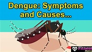 [Latest*] Dengue: Symptoms and Causes-Complete Information