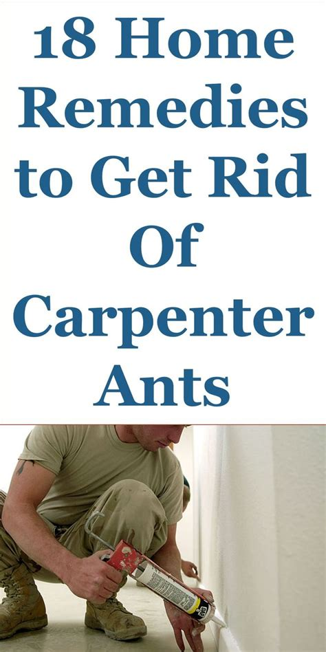 pin  chris jordaan   ways   rid  carpenter