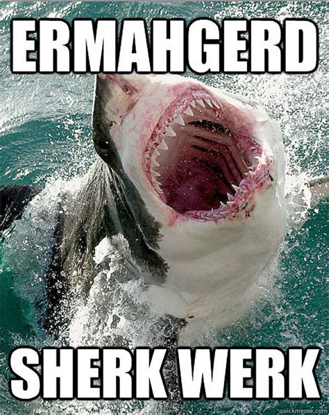 Shark Meme - shark week is overrated and it s time we pick a new animal
