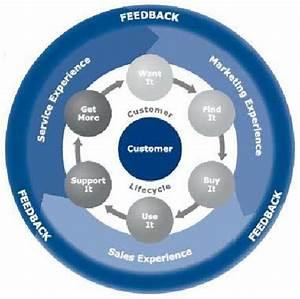 Customer Feedback Lifecycle