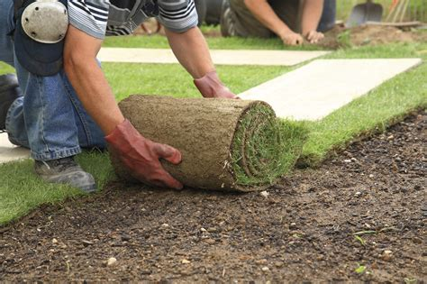 7 landscaping tips to increase your property's value