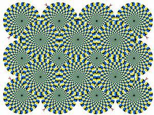 Wallpaper Illusions At Home Depot