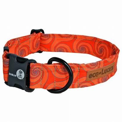 Dog Dublin Collar Monsoon Sun Collars