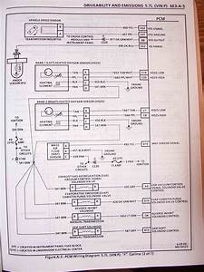 1995 F Body Wire Harness Schematics