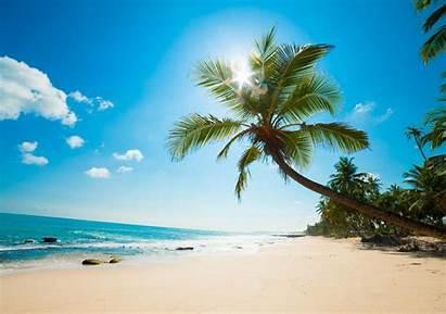 Beach Holidays Zanzibar Island Pierce Fort Safaris