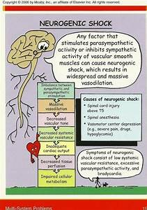Insulin Reading Chart 17 Best Images About Ccrn Study Board On Pinterest