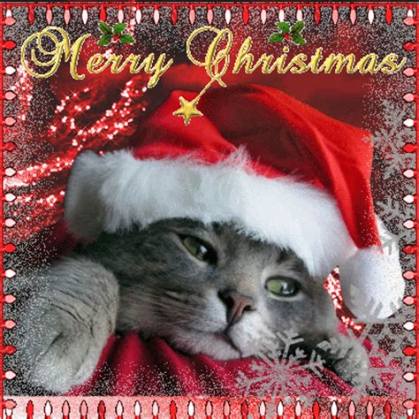 cute merry xmas card  merry christmas wishes ecards