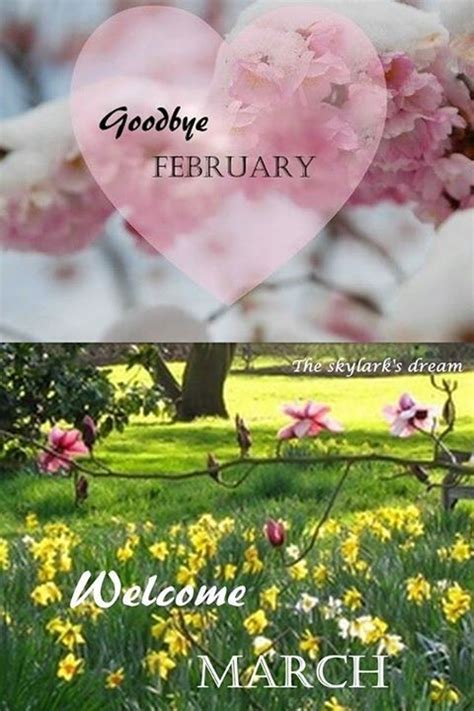 Goodbye February Hello March Pictures, Photos, and Images ...