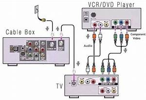 Wiring Diagram For Cable Box To Tv Dvd  Wiring  Free