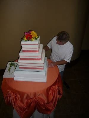 heidis cakes  bric  brac extreme cakes