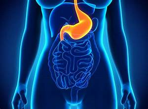 Douleur Milieu Dos Cancer : douleur l 39 estomac et au dos un signe d 39 ulc re medisite ~ Medecine-chirurgie-esthetiques.com Avis de Voitures