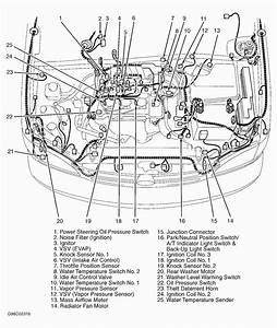1998 Lexu Es300 Wiring Diagram
