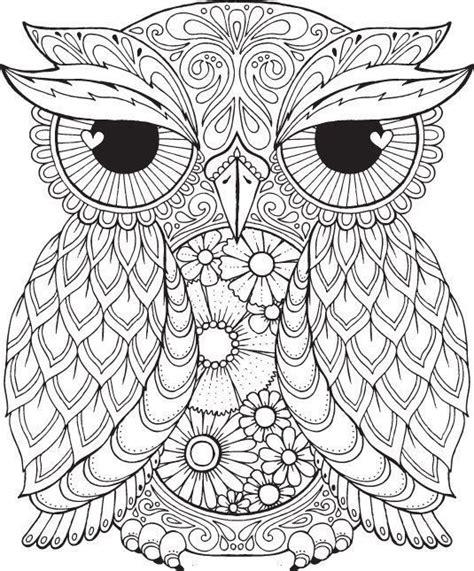 pin  shreya thakur   coloring pages owl coloring