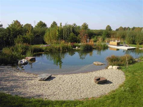 Swimming Pond : Natural Swimming Pools Becoming More Popular In The Us