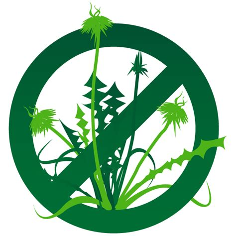 Image result for weed control clipart