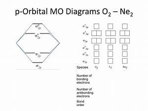 31 Ne2 Molecular Orbital Diagram