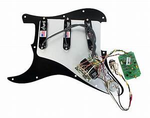 Fender Stratocaster Strat Clapton Lace Sensor Gold Loaded