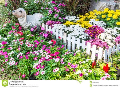 beautiful flower garden stock photo image 51019464