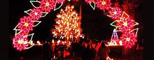 Spanaway Lights Christmas Holiday Lights Discount Tickets Seattle Area