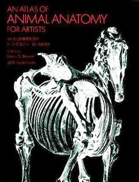 atlas  animal anatomy  artists  wilhelm ellenberger