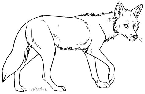 coyote clipart black and white coyote lineart by kaylink on deviantart
