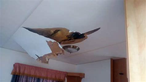 caravan wall boards ceiling panels static caravans