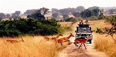 Queen Elizabeth National Park   Uganda Tourism Center