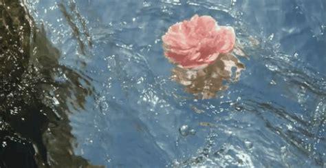 aesthetic water idk   heart