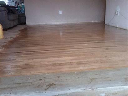 Floor Hardwood Wood Buffing Cleaning Deep Huge
