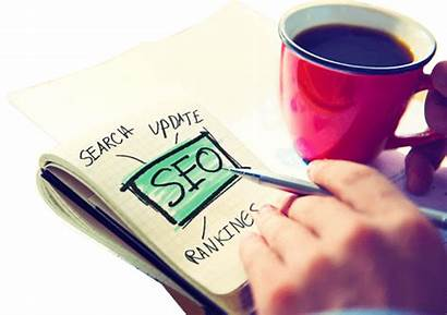 Seo Angeles Services Offered Important Ask Questions