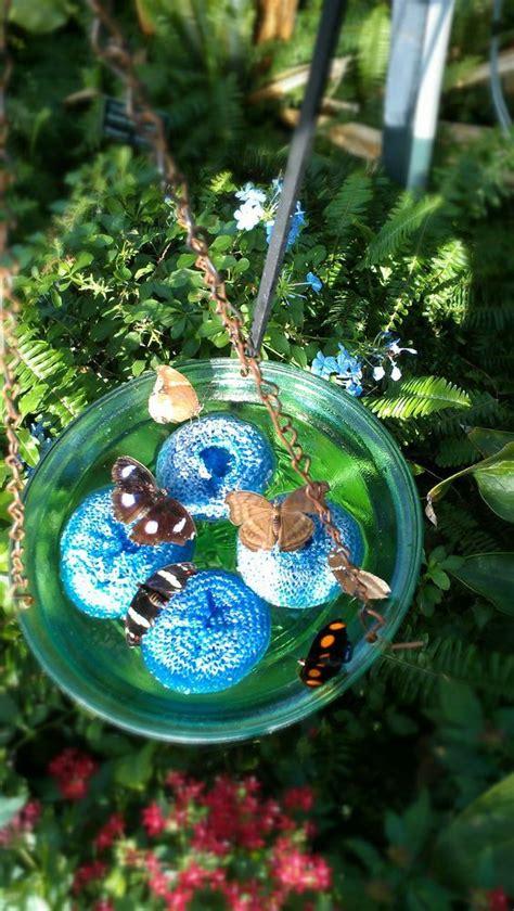 Garten Pflanzen Schmetterlinge by Schmetterlinge Im Garten Sind Wunderbar Locke
