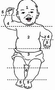 Neonatal Jaundice Levels Chart Jaundice In Neonates Health Vic