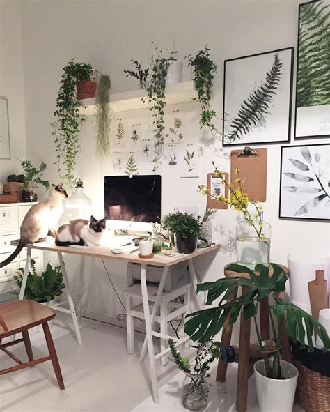 Bedroom Ideas With Plants