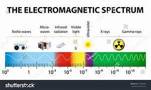 Electromagnetic Spectrum Vector Diagram Different Types