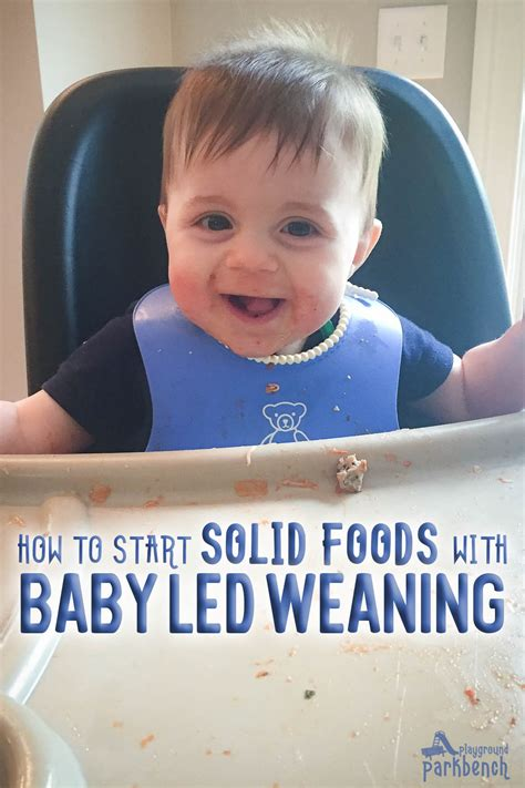 Transitions Starting Solids With Baby Led Weaning Foods