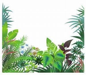Jungle clipart jungle border - Pencil and in color jungle ...