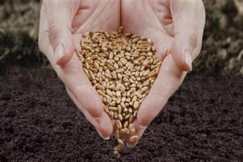 fertilità e alimentazione concepimento la dieta della fertilit 224 blogmamma it