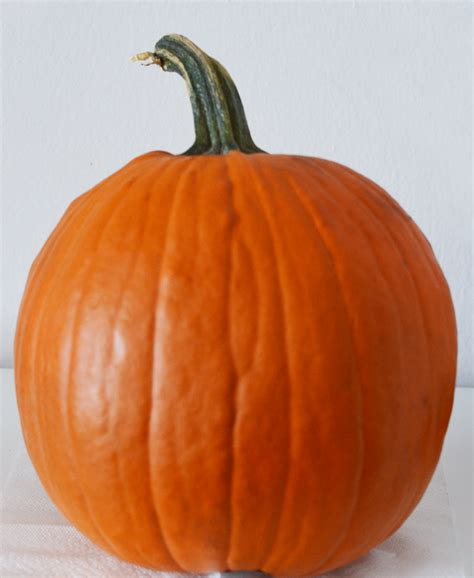 what to make with pumpkin carving up some fun with pumpkin masters pumpkin carving kits giveaway the stitchin mommy