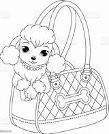 Coloring Poodle Poodles Printable Sheet Animals Pcbs Assembly sketch template