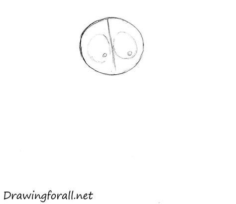 draw  cartoon cat drawingforallnet