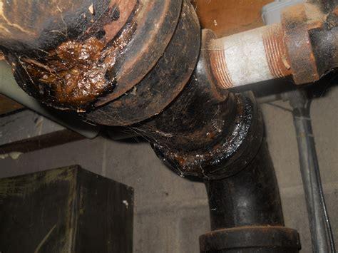 sewer pipe leaking  basement mycoffeepotorg