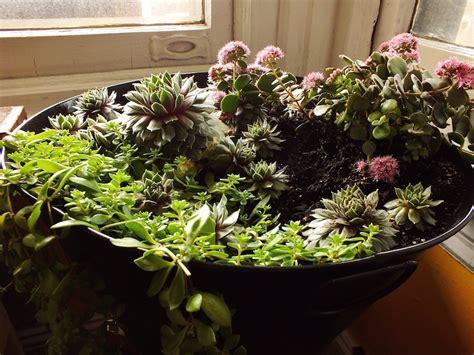 11 innovative indoor planter ideas garden club