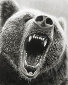 Grizzly Bear Drawing Black and White