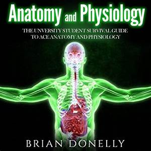 2019  Anatomy And Physiology  The University Student Survival Guide To Ace Anatomy And