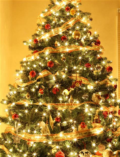 do you decorate your tree with white or colored
