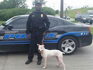 These Officers Took A Chance By Adopting Pit Bulls As ...
