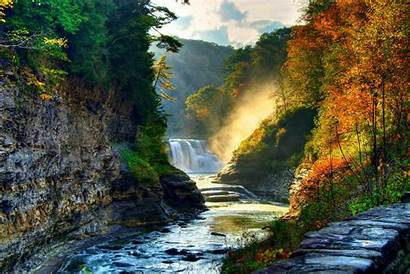 Forest Waterfall Nature Woods Landscape River Tree