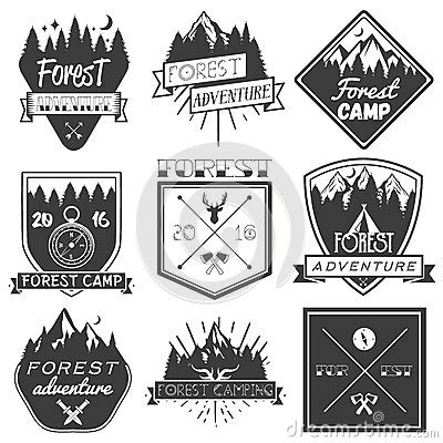 vector set of forest c labels in vintage style design elements icons logo emblems and