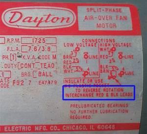 31 Dayton Capacitor Start Motor Wiring Diagram
